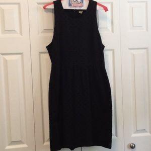 J. Crew Factory Dresses - J Crew Factory Velvet Polka Dot Dress L